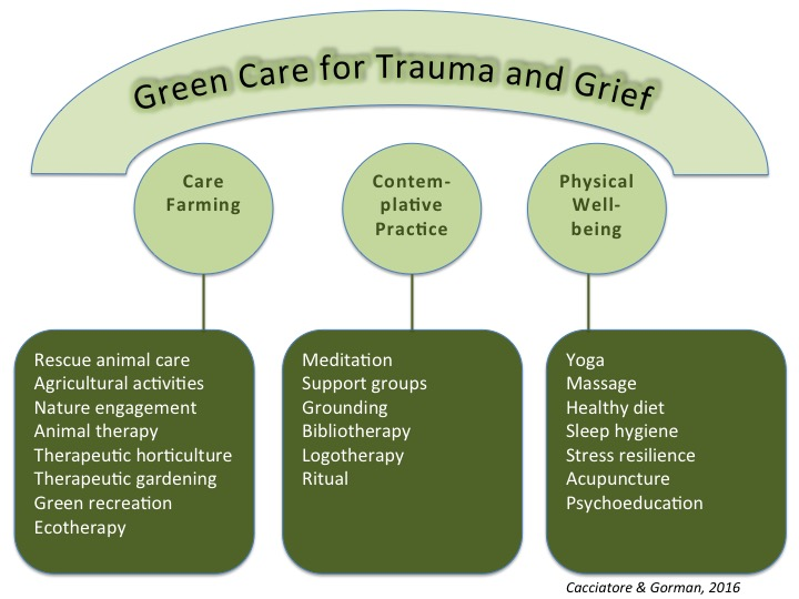 Compassionate Bereavement Care Certification